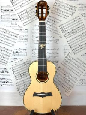 Snail BHC-5C Solid Spruce Top/Ebony Concert Ukulele with Slotted Headstock
