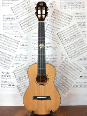Snail BHC-6T Solid Cedar Top/Ebony Tenor Ukulele with Slotted Headstock