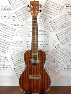 Kala KA-CG Concert Ukulele Gloss All Mahogany with Aquila strings