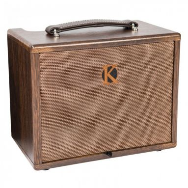 Kinsman KAA45 Acoustic Instrument Amplifier (AC or Battery Power and 2 Channel)