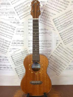 Tim Williams Solid Mahogany Concert ukulele in gigbag