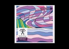 aNueNue AS-PACT Concert/Tenor Purple Aurora Nylon Strings