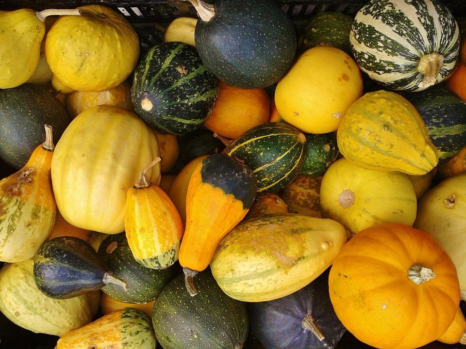 gourd-483002_960_720